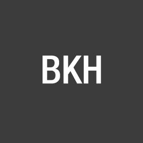 Brouwerskolk Holding